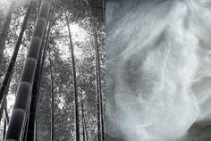 Naturalnie występujący na terenie północnych Chin bambus jest wszechobecny w architekturze, przemyśle, sztuce kulinarnej i krajobrazach Azji. Firma Vispring pozyskuje włókno bambusa z Chin. To bardzo trwały naturalny materiał, który charakteryzuje się dużą miękkością i wysoką absorpcją. Odprowadza wilgoć, dzięki czemu budzisz się orzeźwiony.