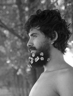 aww blossom beard