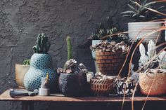 Pilar Wiley as photographed by Jessica MacCormick   The Garden Edit