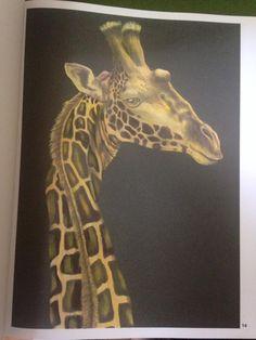 Giraffe by Pamela Escalante Zamora