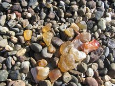 Beach agates (love hunting for them!)