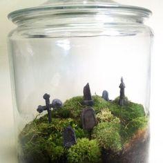 Bonsai Terrarium For Landscaping Miniature Inside The Jars 46