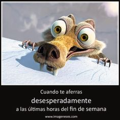 #FelizDia Imagenes Domingo