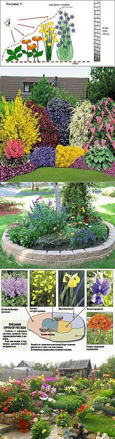 Красивые клумбы из многолетних цветов. Часть 2.