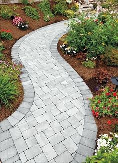 31 Most Popular Paver Walkway Design Ideas 18 - DecoRequired Front Yard Walkway, Paver Walkway, Front Yard Landscaping, Walkways, Driveways, Paver Edging, Landscaping Ideas, Paver Sidewalk, Diy Paver