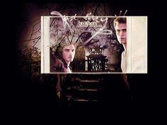 The Vampire Diaries The Salvatore Brothers, Mystic Falls, Stefan Salvatore, Paul Wesley, Vampire Diaries, Vampires, Concert, Movie Posters, Hot