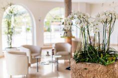 Die Orchidee und helle Farben findet man im Castel überall.