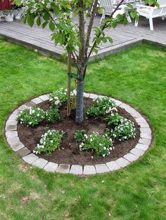 Här under Biggaråträdet ska det bli en rabatt:) Vi märker ut gräver ur l Cottage Garden Design, Garden Decor, Backyard Garden, Garden Edging, Landscaping Around Trees, Backyard Landscaping, Cottage Garden, Garden, Memorial Garden