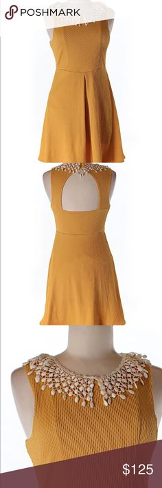 Free people crochet collar dress Free People crochet collar dress. Open back. Fit and flare silhouette. 95% polyester 5% spandex. Length is 33 in. Bust is 30 in. New without tags. No signs of wear or flaws. Ships within one week. Free People Dresses