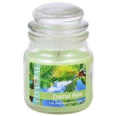 Coastal Palm Scented Jar Candles with Lid, 3 oz.