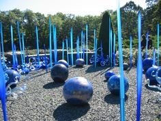Chihuly Glass Sculptures Reeds and Blue Balls