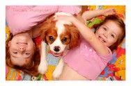 Raças de cães mais recomendadas para viver com crianças