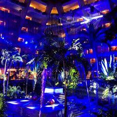El lobby azul