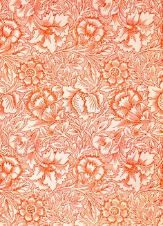 Pink and Poppy Art Print by William Morris at King & McGaw