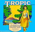 Placentia Tropic Hawaii Hawaiian Oran...