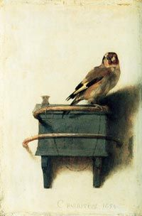 Carel Fabritius. The Goldfinch. 1634. Oil on panel. Mauritshuis, the Hague, Netherlands.