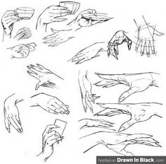 I have the Hardest time Drawing Hands,  This site totally is helping! :)  how to Draw Female Hands by artrush73