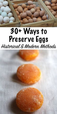Canning Recipes, Egg Recipes, Canning Tips, Konservierung Von Lebensmitteln, Preserving Eggs, Dehydrating Eggs, Canning Food Preservation, Dehydrated Food, Survival Food
