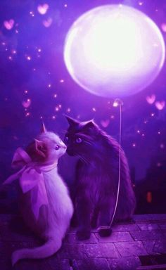 Purple kittens