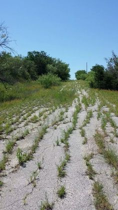 Abandoned road in central Texas  #abandoned #road #central #texas #photography