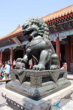 Beijing/ Beijing