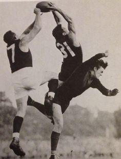 Melbourne v Fitzroy in 1957 ( Ron Barassi No ) Carlton Afl, Carlton Football Club, Australian Football, Go Blue, Rugby, Melbourne, Legends, Blues, Action