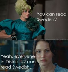 My life is now complete. i found so many mean girl/hunger games memes