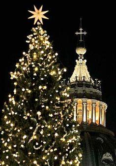 Vatican Christmas tree