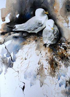 Watercolor Paintings Nature, Watercolor Animals, Watercolor And Ink, Watercolours, Art Aquarelle, Bird Artwork, Bird Drawings, Bird Pictures, Wildlife Art