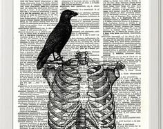 Bird and Ribcage Skeleton Gothic Edgar Allen Poe, Victorian Print, Illustration, Dictionary Print, Gothic Print, Gothic Art