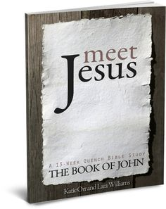 Meet Jesus, a 13 week journey through the book of John.