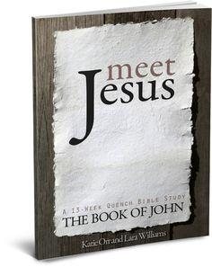 Meet Jesus, a 13 week journey through the book of John.