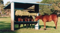 Shelters - The Horse Shed Shop paddock feeding station