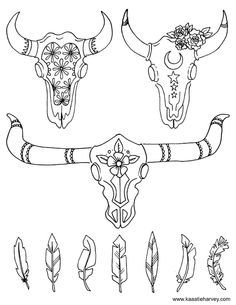 Cow Skull Coloring Book Page by Katie Harvey