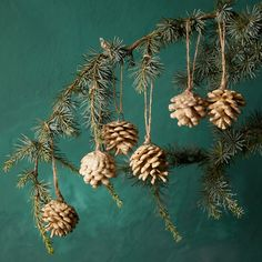 Waxed Pine Cone Ornaments, Set of 6 - Terrain Pine Cone Christmas Decorations, Pinecone Ornaments, Flower Decorations, Holiday Decor, Natural Christmas, Rustic Christmas, Christmas Time, Fir Cones, Outdoor Garden Furniture