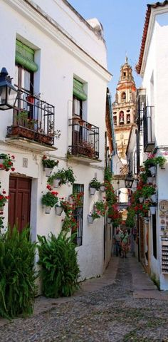 Calleja de las Flores with a view of the Great Mosque of Córdoba in Andalusia, Spain Places Around The World, The Places Youll Go, Places To Go, Around The Worlds, Skiathos, Beautiful Streets, Beautiful Places, Wonderful Places, London Travel Guide