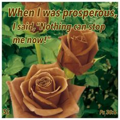 """When I was prosperous, I said, """"Nothing can stop me now!"""" (Psalms 30:6 NLT)"""