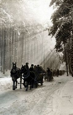 Kulig in the Kampinos Forest, Poland, 1972 [source].  Kulig (sleigh ride) is an old Polish winter tradition popularized by the szlachta (nobility) during Renaissance.