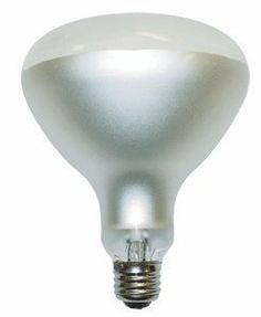 300 watt r40 120 volt philips swimming pool flood light bulb by philips