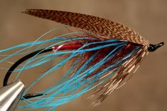 Bronze Mallard Blue - Spey Pages
