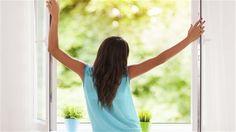 Conheça as plantas ideais para energizar cada ponto da sua casa