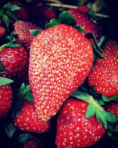 Our Strawberry butter is certified organic and made with real strawberry chunks that gives better taste! #strawberrybutter #strawberry
