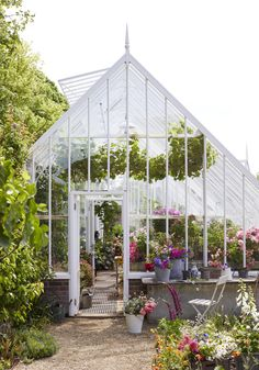Styled by Selina Lake this greenhouse brings together a range of colours and flower combinations to inspiring your own growing scheme.