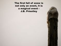"""""""The first fall of snow is not only an event, it is a magical event"""" - J.B. Priestley"""