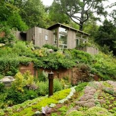 Mill Valley Cabins with artist studio and yoga space | Feldman Architecture  ♥