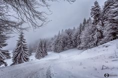 - Winter in Bucegi Mountain Winter's Tale, Romania, Mountain, Explore, Outdoor, Outdoors, Outdoor Games, The Great Outdoors, Exploring