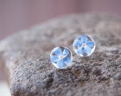 Forget me not Flowers Earrings - studs with 925 Sterling silver post - stocking stuffers - real flowers jewelry
