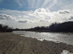 I delighted in watching a channel of the Salinas River fill today as I watched. I've never witnessed the river filling before, and I want to share this awesome experience with you. Salinas River, Dry River, Paths, Fill, Backyard, Awesome, Beach, Opportunity, Channel
