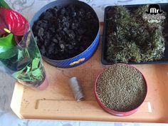 Tutorial: cómo preparar un Kokedama o el arte de cultivar una planta en una bola de musgo | Plantas