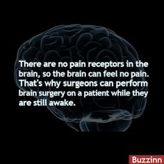 #buzzfacts #brain #pain  #didyouknow #dyk #facts #wtffacts #unbelievablefacts #weirdfacts #jusfacts #bizzarefacts  #amazingfacts #amazing #facts #wtffacts  #omgfacts #Truefacts #omgfacts #omg #wtf  #interestingfacts #Truefacts